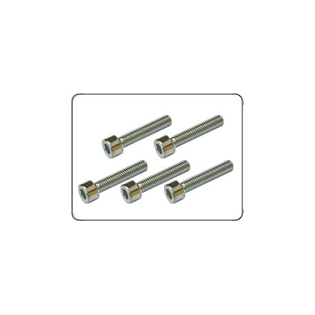 REDUCTION CASING FRONT COVER (RP201) SCREWS M5 (5 UNITS)