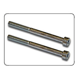 SCREWS (AIR FILTER HOLDING FLANGE) (2 UNITS)